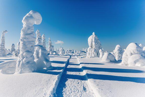 2019 Inverno rigido